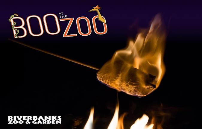 October-Newsletter-BooZoo